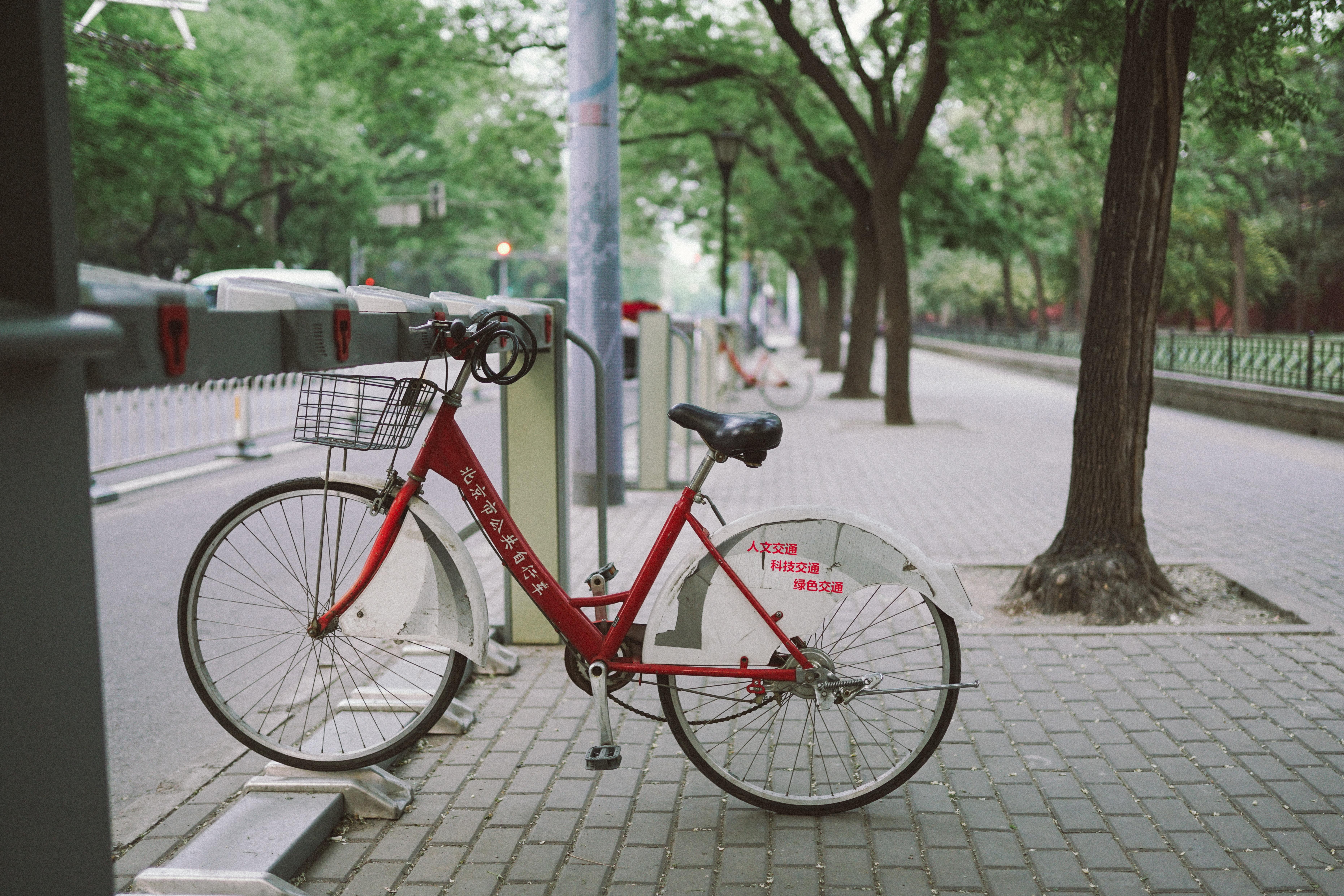 yuanbin-du-88234-unsplash