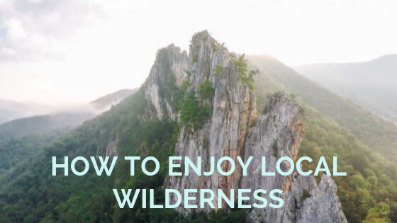 BLOG-Wilderness (1)[16584]